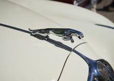 Символ на клобуке ягуара Mk i 1957 автомобиля, парад винтажных автомобилей в Savonlinna, Финляндии Стоковые Фото