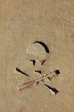 Символ опасности чувствительный Стоковая Фотография
