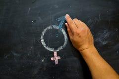 Символы или знаки рода для мужчины и женского секса нарисованных на классн классном Стоковые Изображения RF