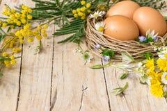 символы пасхи Eggs цветки мимозы Стоковая Фотография RF