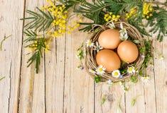символы пасхи Eggs цветки мимозы Стоковое фото RF
