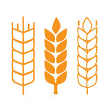 Символы уха пшеницы Стоковые Фотографии RF