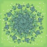 Симметричный геометрический круговой состав картины заводов Стоковая Фотография RF