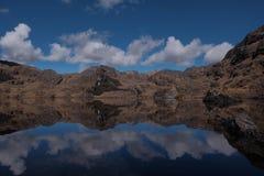 Симметрия природы красивая Стоковая Фотография
