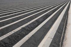 симметрия сельскохозяйствення угодье Стоковое Фото