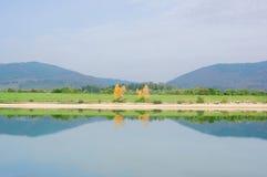 Симметрия с отражениями дерева на озере Стоковое Изображение RF