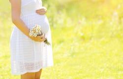 Симпатичная беременная женщина с цветками в дне лета солнечном Стоковая Фотография