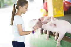 Симпатичная девушка подает свинья Стоковое Фото