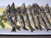 Симпатичная еда в kalloni Lesvos Греции Skala Стоковые Фото