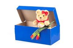 симпатичная игрушка медведя в подарке голубой коробки на белизне Стоковое Фото