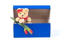 симпатичная игрушка медведя в подарке голубой коробки на белизне Стоковое Изображение RF
