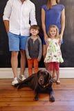 Симпатичная молодая семья с собакой Стоковая Фотография