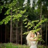 Симпатичная невеста в лесе Стоковые Изображения