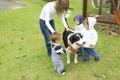 Симпатичная семья играя с любимчиком Стоковое фото RF