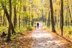 Симпатичная семья идя в образ жизни леса осени здоровый Стоковые Фотографии RF