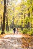 Симпатичная семья идя в образ жизни леса осени здоровый Стоковая Фотография