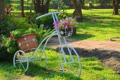 Симпатичная стойка цветочного горшка велосипеда белого металла, в солнечном тайском парке сада Стоковая Фотография RF