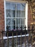 Симпатичное грузинское окно орденской ленты Стоковое Фото