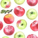 Симпатичное яблоко autunm установило 1 Стоковое Изображение