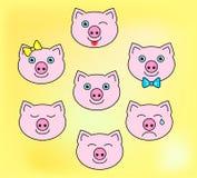 Симпатичное piggy стоковое изображение