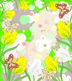 Симпатичные белые и желтые тюльпаны зацветая с бабочками Стоковые Фото