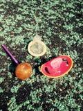 Симпатичные вещи Стоковая Фотография RF