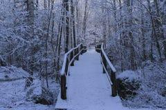 Симпатичные детали ветвей с снегом, заморозком и деревянным мостом Стоковая Фотография
