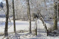 Симпатичные детали ветвей с снегом, заморозком и деревянным мостом Стоковые Фотографии RF