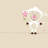 Симпатичные овцы Стоковые Фото