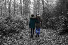 Симпатичные пары в лесе Стоковые Фото