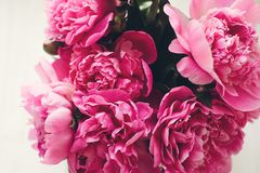 Симпатичные розовые пионы на деревенском белом деревянном окне в li утра Стоковая Фотография RF