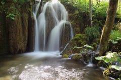 Симпатичный водопад Стоковые Фото