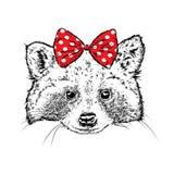 Симпатичный енот в крышке и стеклах Vector иллюстрация для открытки или плаката, печати для одежд Дикое животное в одеждах бесплатная иллюстрация