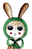 Симпатичный зайчик акварели в зеленой шали Стоковые Фотографии RF
