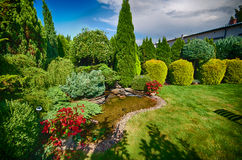 Симпатичный зеленый сад Стоковые Фотографии RF