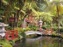 Симпатичный парк на острове Мадейры стоковые фотографии rf