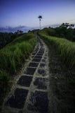 Симпатичный путь Стоковые Фото