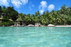 Симпатичный пляж с водой бирюзы и зелеными пальмами на Trop Стоковая Фотография RF