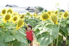 Симпатичный ребенок вокруг летних каникулов цветка солнца Стоковые Фото