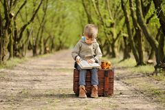 Симпатичный, усмехаясь мальчик сидя на стуле с плюшевым медвежонком на весеннем времени Карее дерево Стоковая Фотография RF