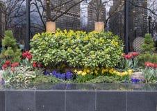 Симпатичный plantar квадрат Rittenhouse тротуара, Филадельфия, Пенсильвания стоковые фото