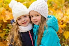 2 симпатичных подруги в парке осени Стоковые Фото