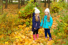 2 симпатичных подруги в парке осени Стоковые Фотографии RF