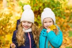 2 симпатичных подруги в парке осени Стоковое Изображение RF