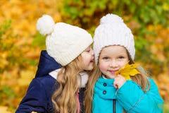 2 симпатичных подруги в парке осени Стоковое Изображение