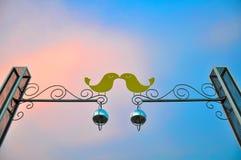 2 симпатичных птицы в влюбленности Стоковые Фотографии RF