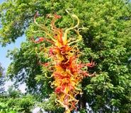 Симфонизм цветов Стоковая Фотография RF