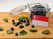 Сингапурский флаг на деревянной планке с голубиками дальше Стоковое Изображение