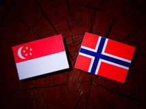 Сингапурский флаг с норвежским флагом на изолированном пне дерева Стоковая Фотография