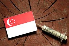 Сингапурский флаг на пне при шприц впрыскивая деньги Стоковое Изображение RF